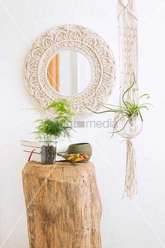 Spiegel mit Makramee Rahmen, Baumstamm mit Zimmerpflanze und Makramee Blumenampel