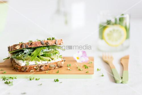 Sandwich mit Frischkäse, Avocado, Gurke, Rucola und Kresse