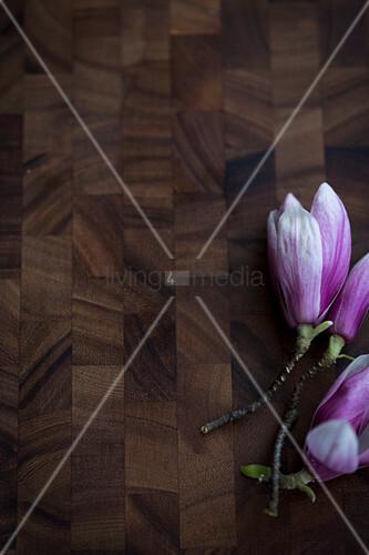 Magnolienblüten auf Holzuntergrund