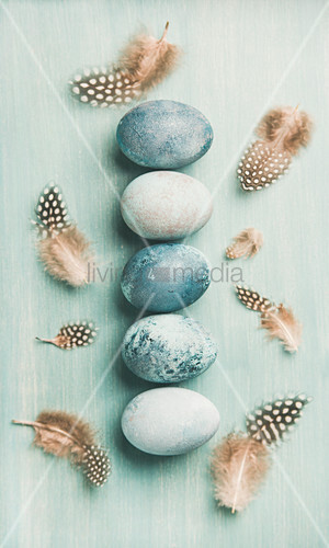 Row of blue-painted Easter eggs and feathers on blue surface