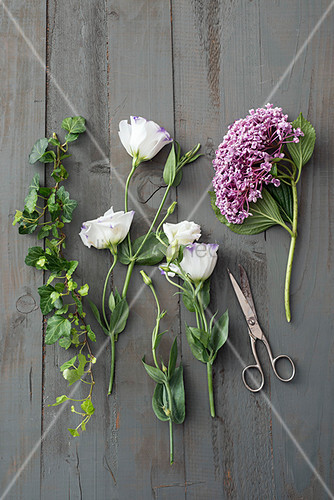 Ivy, eustomas and hydrangea on wooden surface