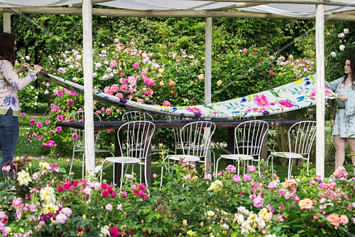 Two women laying a table below a pergola in a rose garden