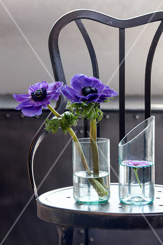 Blue anemones in vases made from cut-off wine bottles