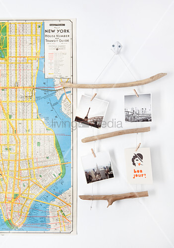 Photos hung from driftwood rope ladder