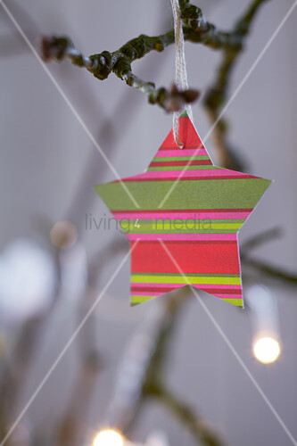 Striped paper star hung from branch