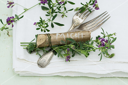 Cutlery and place markers made from pieces of hazel wood decorated with purple-flowering alfalfa (Medicago sativa)