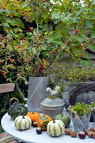Table Arrangement With Rosehip Bouquet And Ornamental Pumpkins