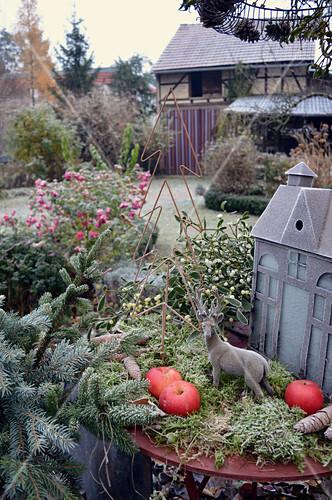 Christmas decoration with moss, lantern, spruce, mistletoe, apples and deer figurine