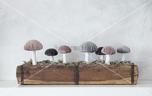 Selbstgemachte Pilze mit Samthütchen in einer Holzkiste