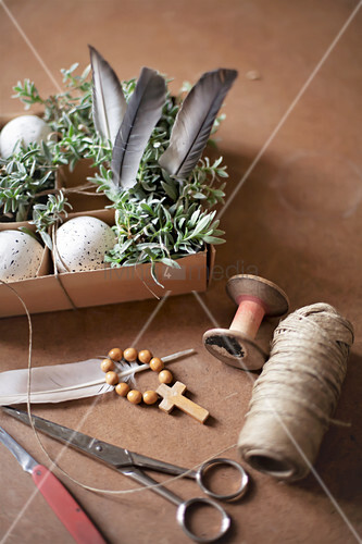 Speckled eggs, feathers and chickweed in box