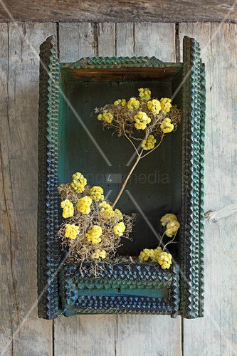 Everlasting flowers arranged in dried valerian seed heads