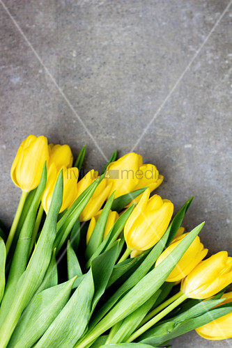 Bunch of yellow tulips on stone surface