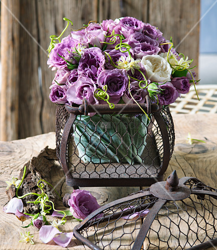 Bouquet of purple and white roses