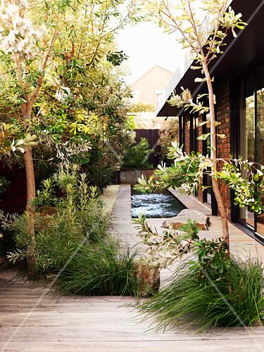 Beete und Pool in der Terrasse eines modernen Hauses