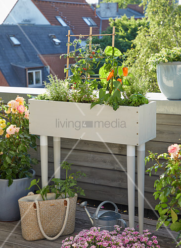DIY planter on balcony