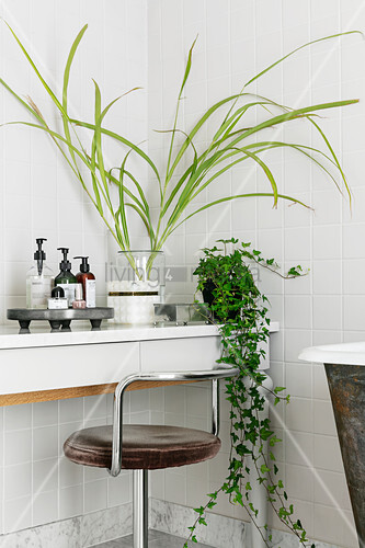 Plants and cosmetics on dressing table with old swivel chair