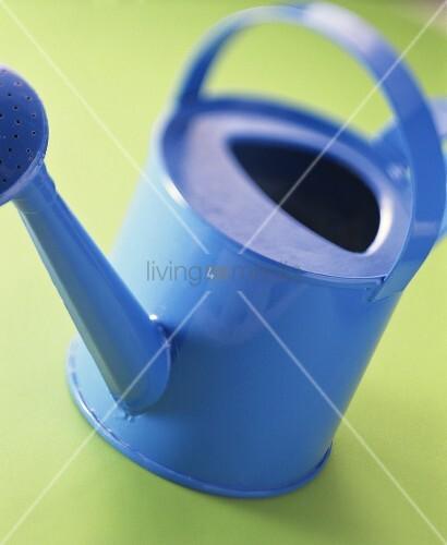 Eine blaue Giesskanne