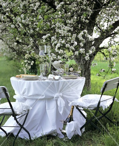 Table laid in white under flowering apple tree