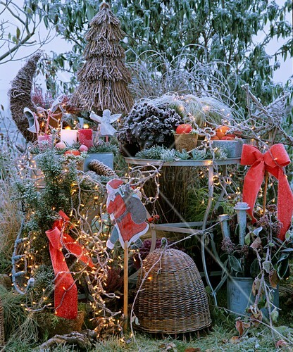 weihnachtliche dekoration im garten bild kaufen 00271027 living4media. Black Bedroom Furniture Sets. Home Design Ideas