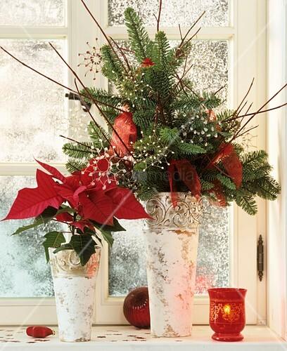 weihnachtsstern und gesteck aus nobiliszweig am fenster bild kaufen living4media. Black Bedroom Furniture Sets. Home Design Ideas
