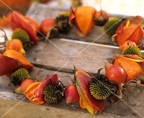 Wreath of Chinese lanterns (Physalis)& Rudbeckia seed heads