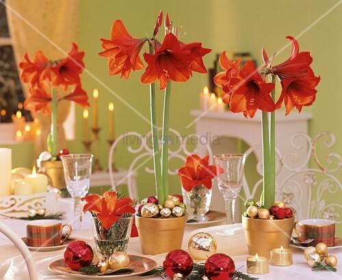 Amaryllis Baumkugeln Auf Festlich Gedeckter Weihnachtstafel Bild
