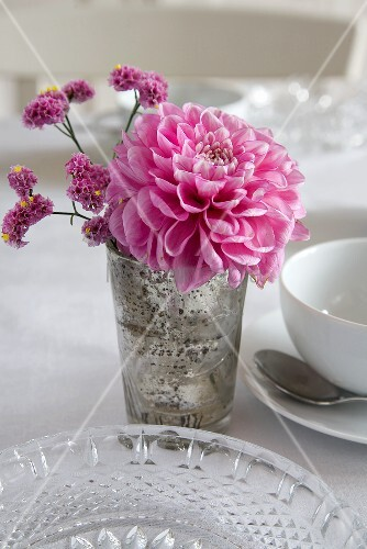 Pink dahlias as table decoration