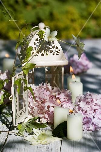 laterne mit hortensien und kerzen als tischdeko bild kaufen living4media. Black Bedroom Furniture Sets. Home Design Ideas