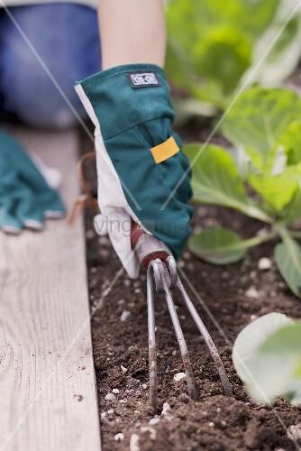 Kind lockert die Erde im Gemüsebeet