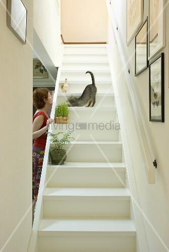Weiße Holztreppe frau spielt mit katze auf weisser holztreppe treppe bild kaufen