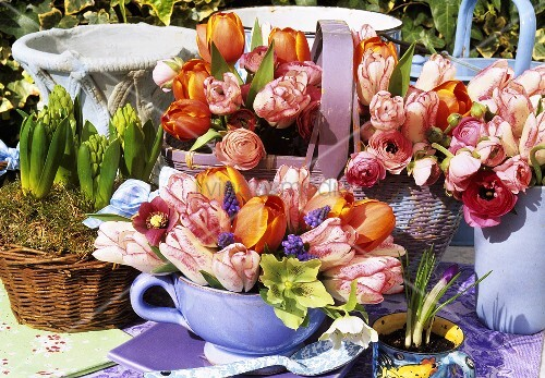Tulips in basket and vases