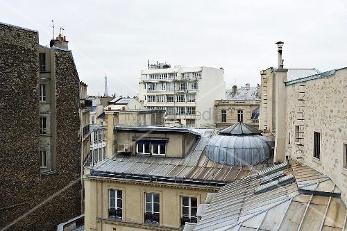 A Parisian roofscape