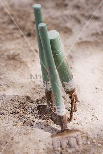 Gartenwerkzeuge in der Erde