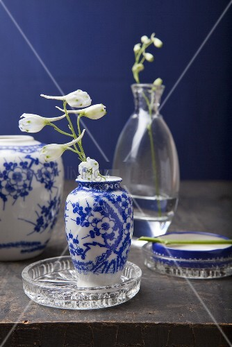 Chinese vases with white and blue painted decoration and white larkspur in glass vases