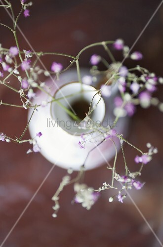 Blossoming sprigs in a vase
